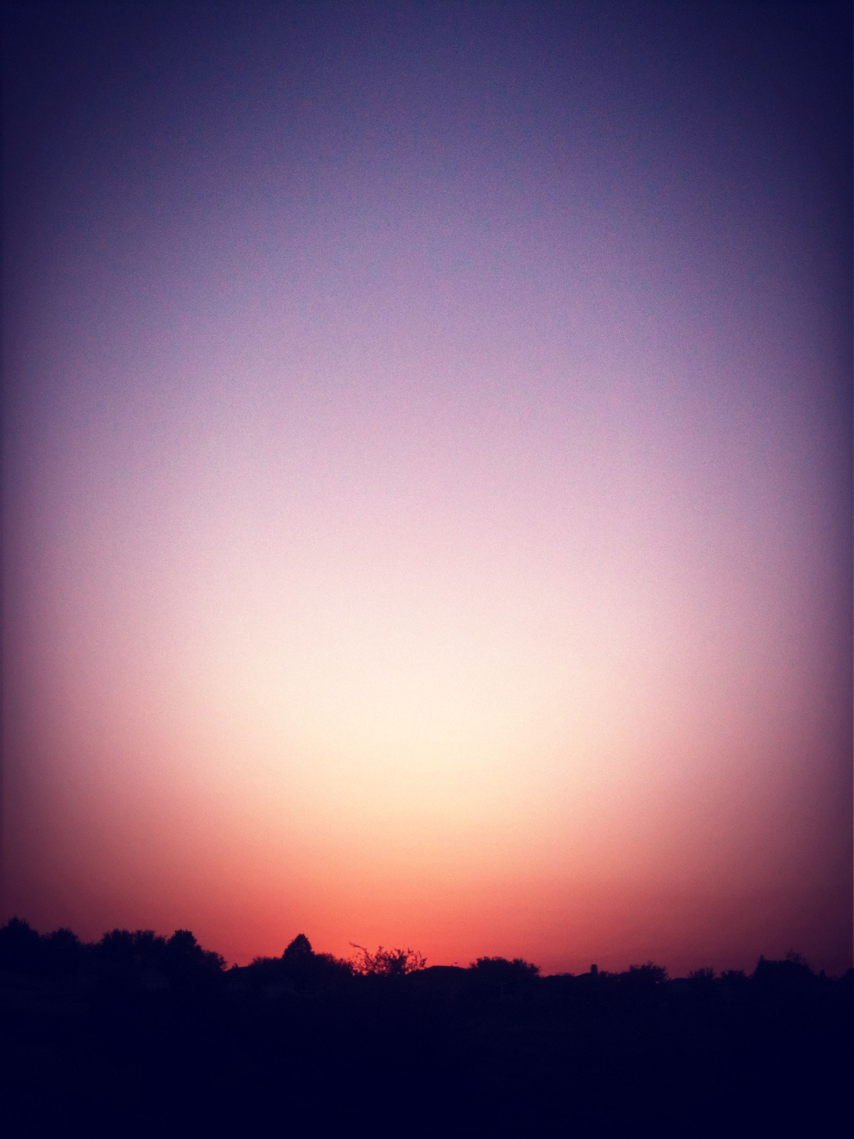 silhouette, copy space, sunset, tranquil scene, clear sky, scenics, tranquility, beauty in nature, nature, dark, tree, landscape, idyllic, dusk, outline, orange color, outdoors, no people, sky, non urban scene
