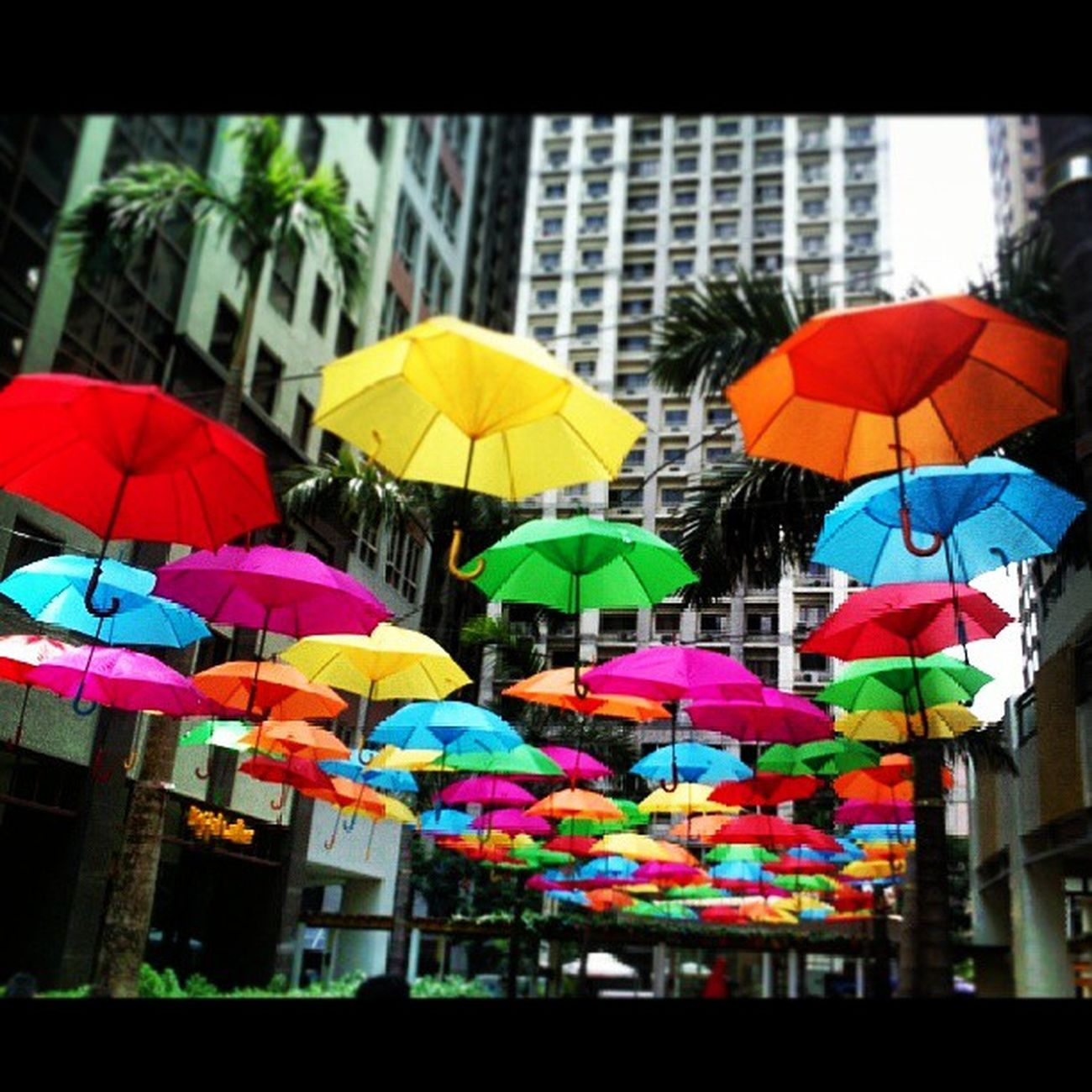 Colorful umbrellas @ Eastwood Mall Eastwood City Libis Franxhiz Umbrella EastwoodCity Eastwoodmall colors