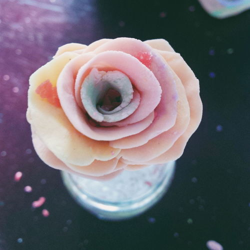 First Eyeem Photo Flower Handmade Soap Student Beautiful Awesome Love Pink Purple Orange
