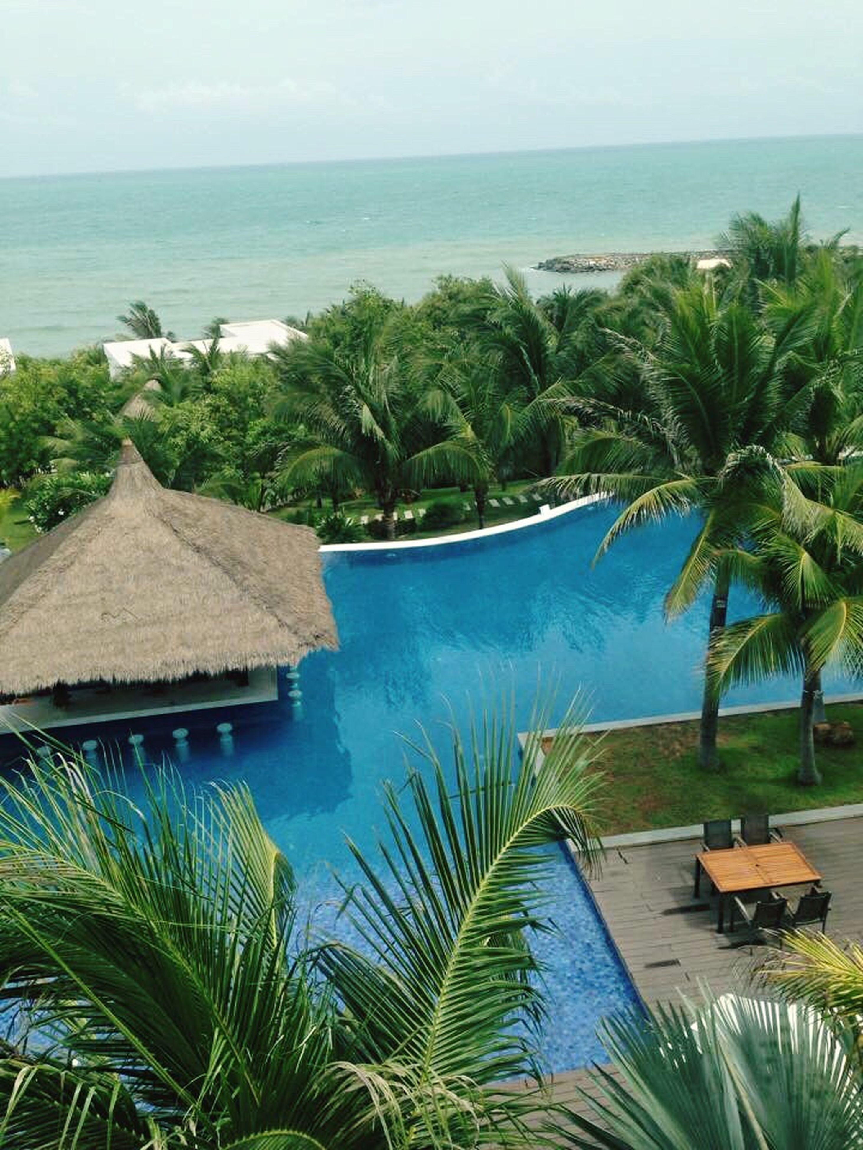 sea, scenics, water, horizon over water, beauty in nature, tree, tranquil scene, blue, tranquility, nature, palm tree, idyllic, no people, sky, clear sky, day, swimming pool, thatched roof, vacations, outdoors, beach, infinity pool