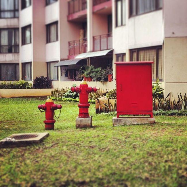 Iphonesia Rasuna Apartemen Apar fire red