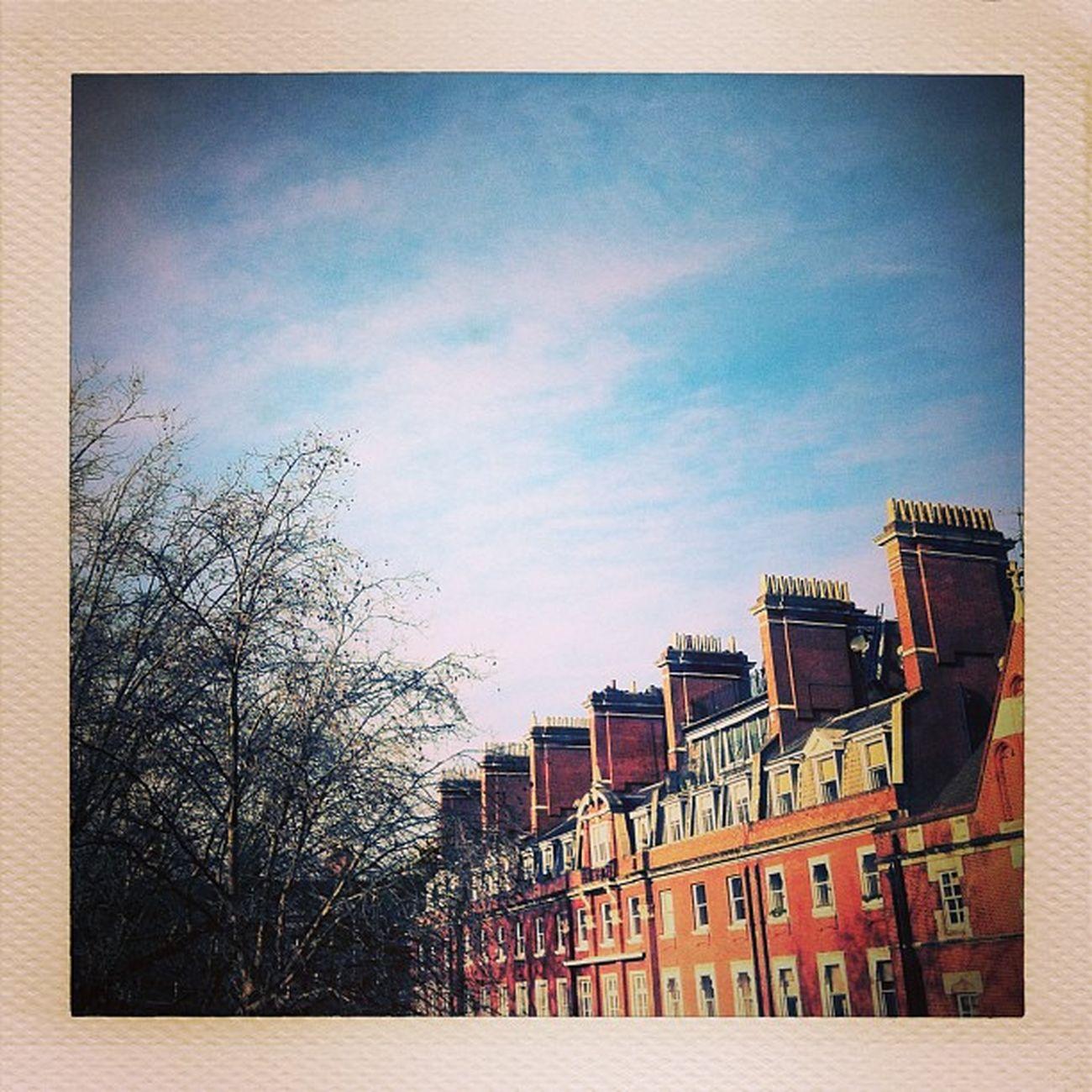 London Cadogan Marypoppins Sunny sky clean morning luckyfella chim-chimney