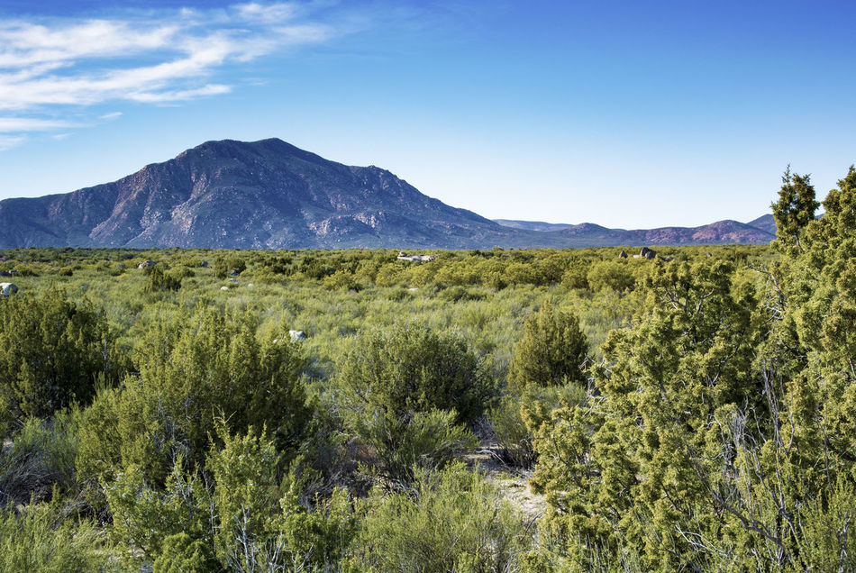 Beautiful stock photos of mexiko, Beauty In Nature, Day, Ensenada, Field