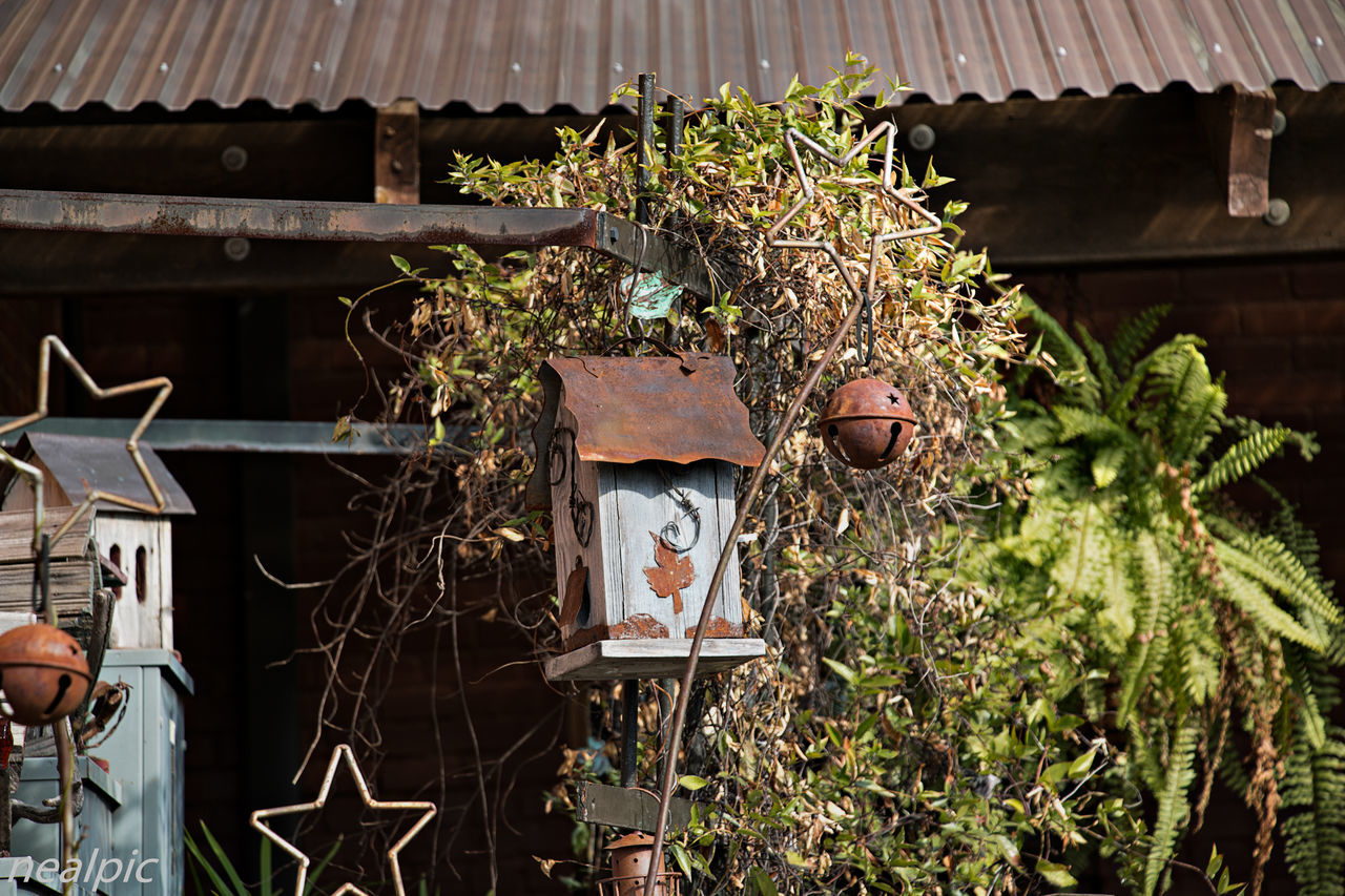 Architecture Day Eye4photography  EyeEm Gallery No People Oldbirdhous Outdoors Sky Tree Urbanphotography Urbexexplorer