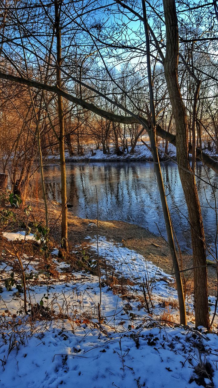 winter, nature, tranquility, bare tree, tree, tranquil scene, beauty in nature, cold temperature, snow, no people, scenics, water, outdoors, river, landscape, day, forest, branch, sky
