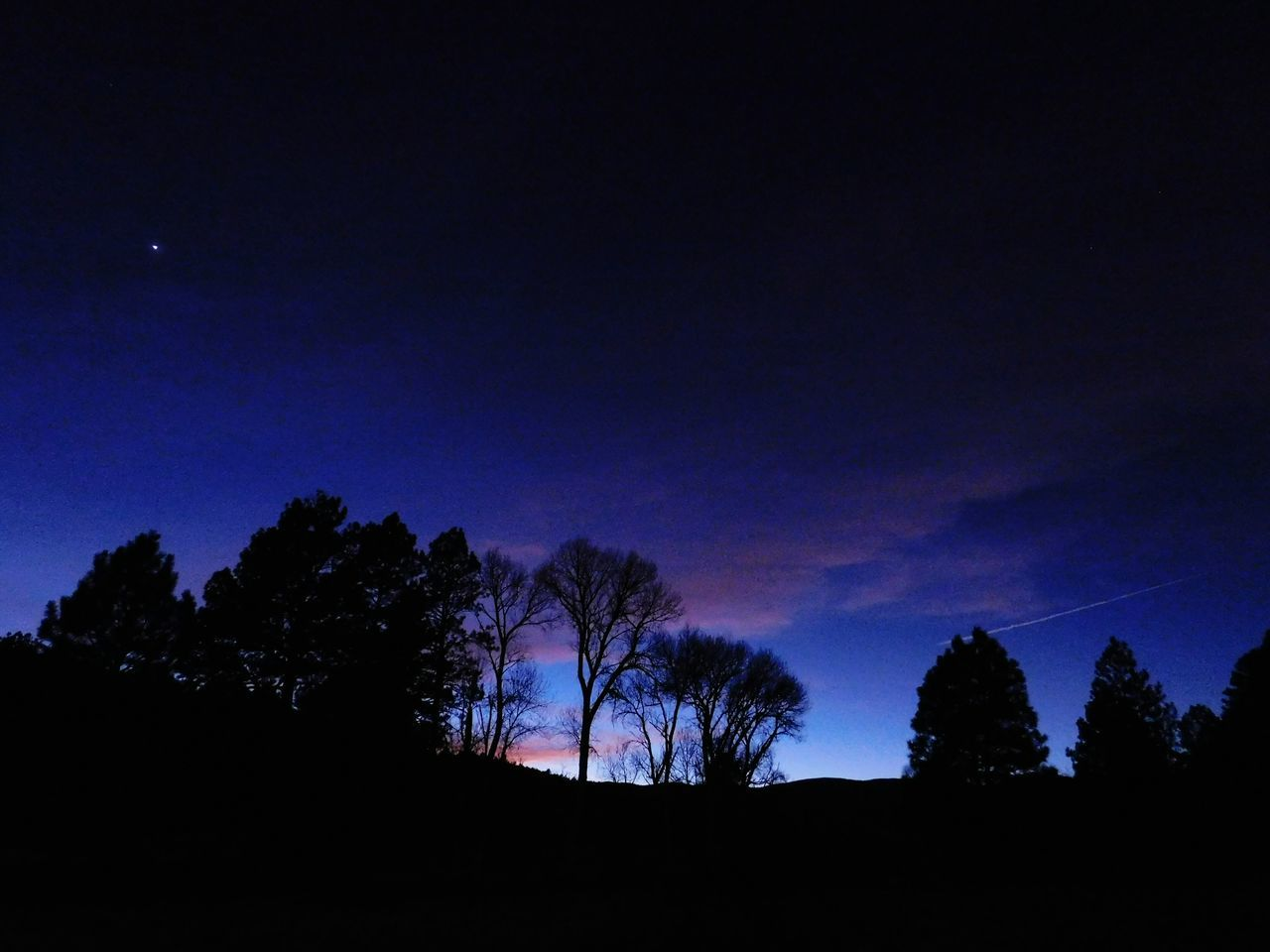 Night Silhouette Beauty In Nature Low Angle View Sunset Newmexicosunset Newmexicoskies Newmexicosunsets Newmexicophotography NewMexicoTRUE Newmexicoskys Newmexicomountain Cloud - Sky Rural Scene Silhouette Tree Beauty In Nature Scenics Dramatic Sky
