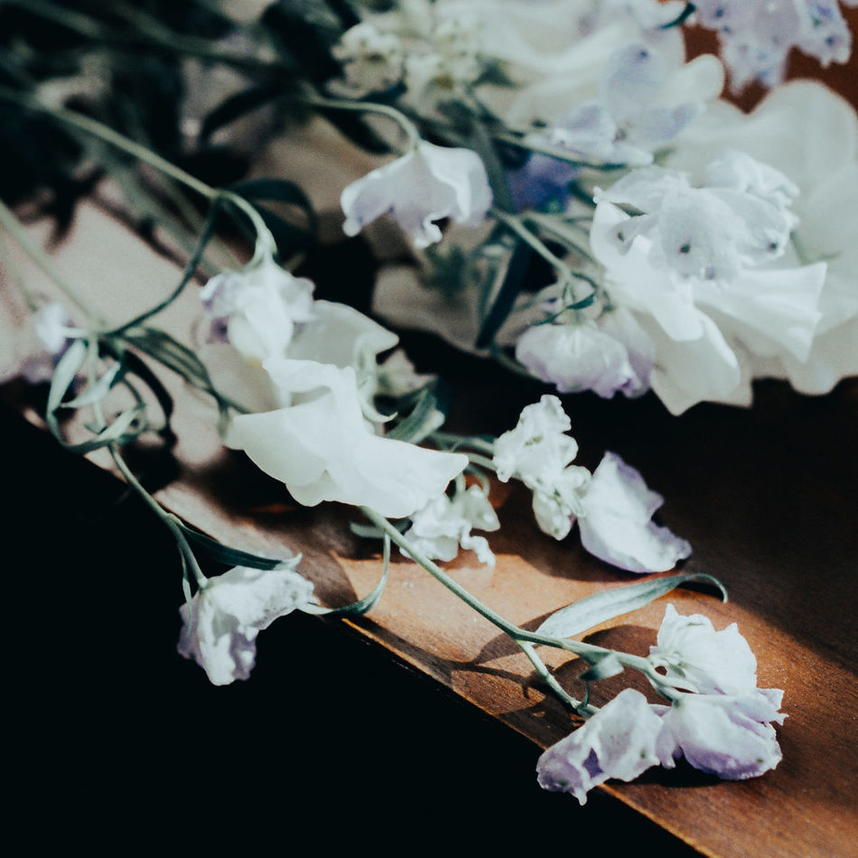 Bouquet Close-up Day Flower Flower Head Fragility Freshness Indoors  No People Petal