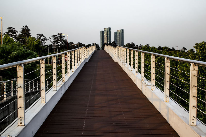 Architecture Bridge Bridge - Man Made Structure Built Structure Column Connection Empty Engineering Leading Learn & Shoot: Leading Lines Long Modern Narrow Park Pier Railing Steps SUPPORT Suspension Bridge Symetric The Way Forward Trail Walk