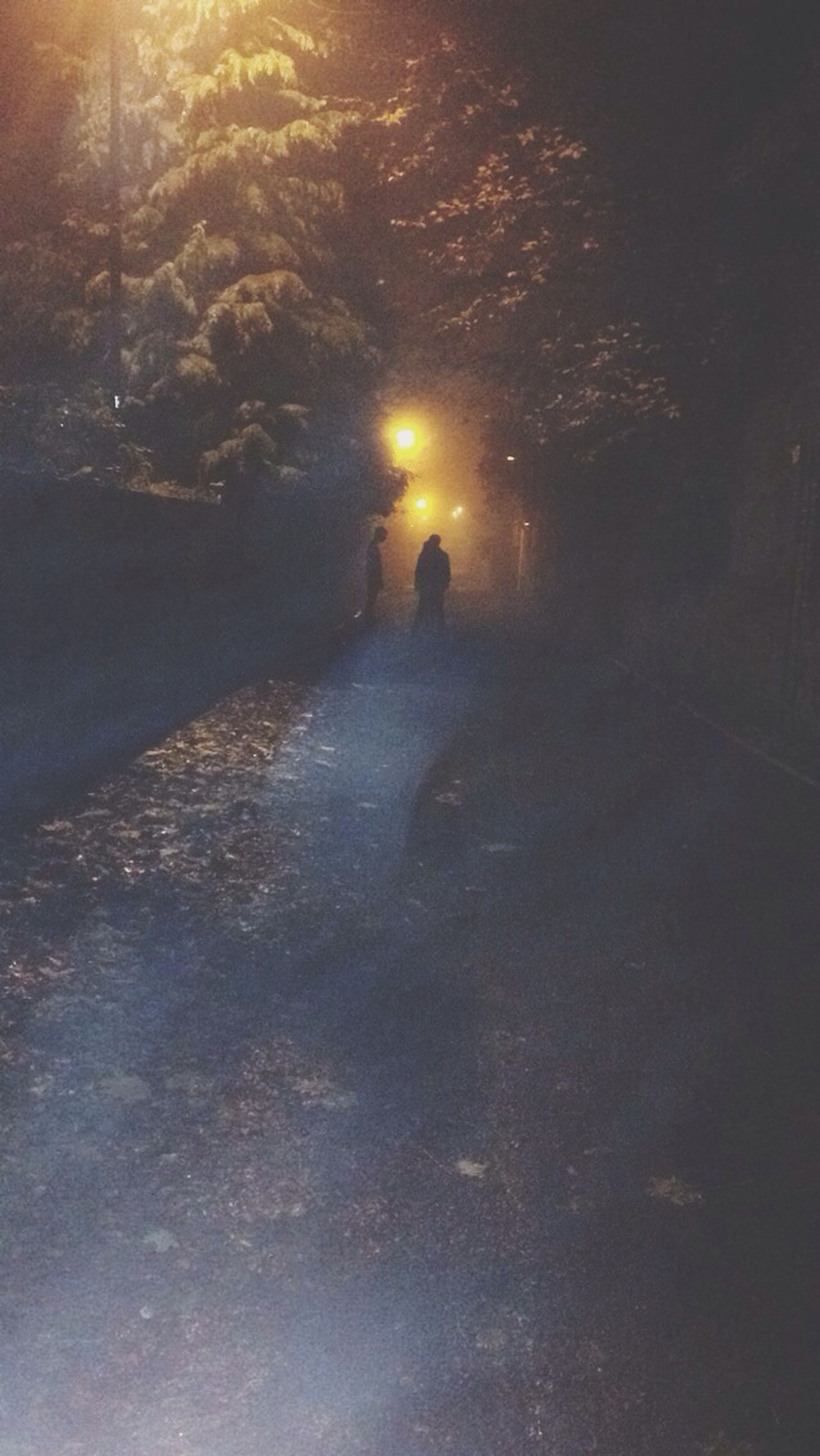 night, the way forward, street, illuminated, road, transportation, men, unrecognizable person, walking, puddle, lifestyles, silhouette, weather, season, water, leisure activity, outdoors, street light