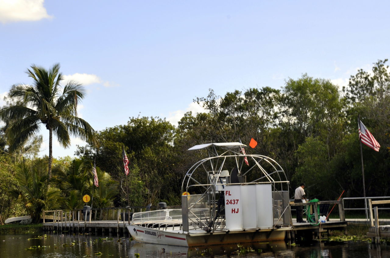 Airboat Everglades  Miami Nature Outdoors Swamp Swamplife USA