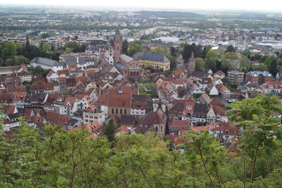 Weinheim Cityscapes View From Above Old Buildings Максим