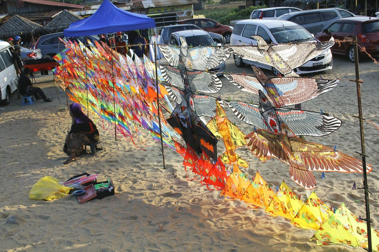 People Of The Oceans Kites Chilling At The Beach Play Till Dead