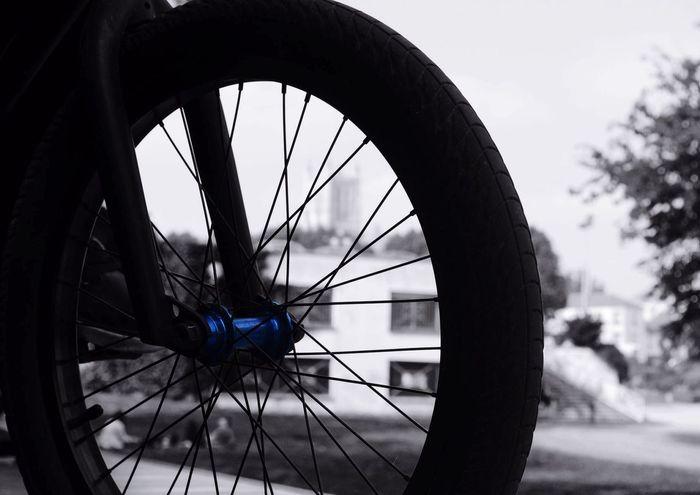 Meaux Roue  Bmx  Bleu Noir Et Blanc NikonD3100