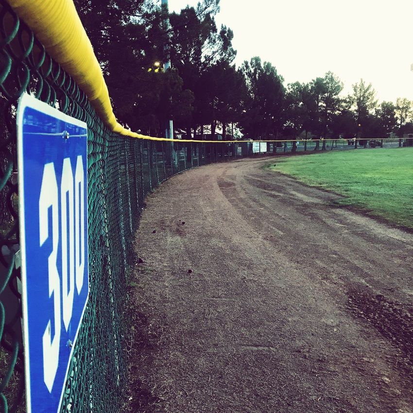 Baseball Text Tree The Way Forward Day Outdoors Communication Road Road Sign Sky No People Baseball Baseball Field Gilbert Az Gilbert Fence Line Fence Lines Out Of Bounds