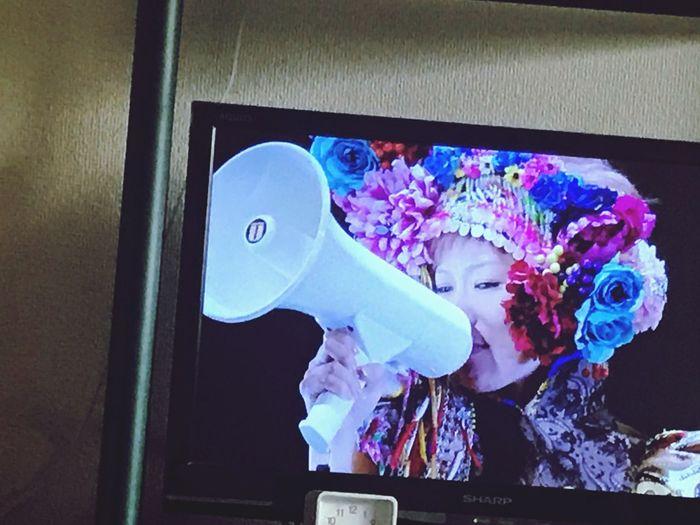 Live Music DVD Time Watching Tv Holiday Tokyo,Japan 東京事変 椎名林檎 SHEENA RINGO BonVoyage