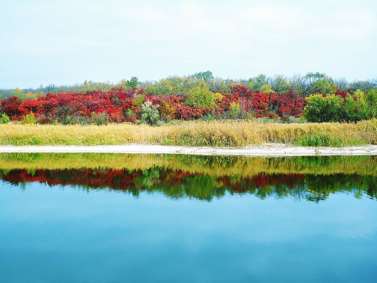 reflection, lake, beauty in nature, nature, water, autumn, scenics, tranquil scene, tranquility, tree, no people, change, day, outdoors, sky, waterfront, leaf, red, symmetry