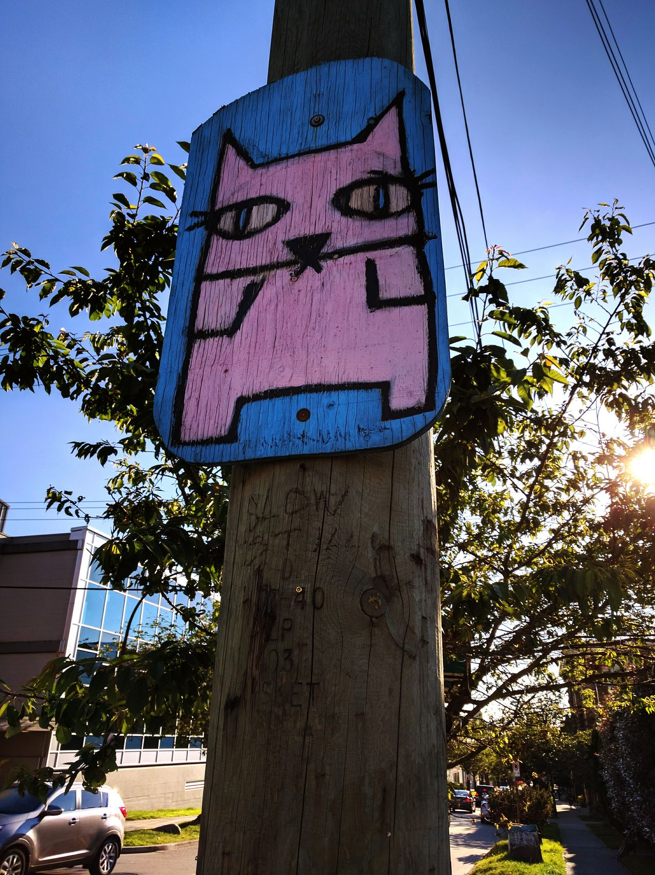 Kitty on a pole Outdoors No People Art Is Everywhere Pink blue Urban Art