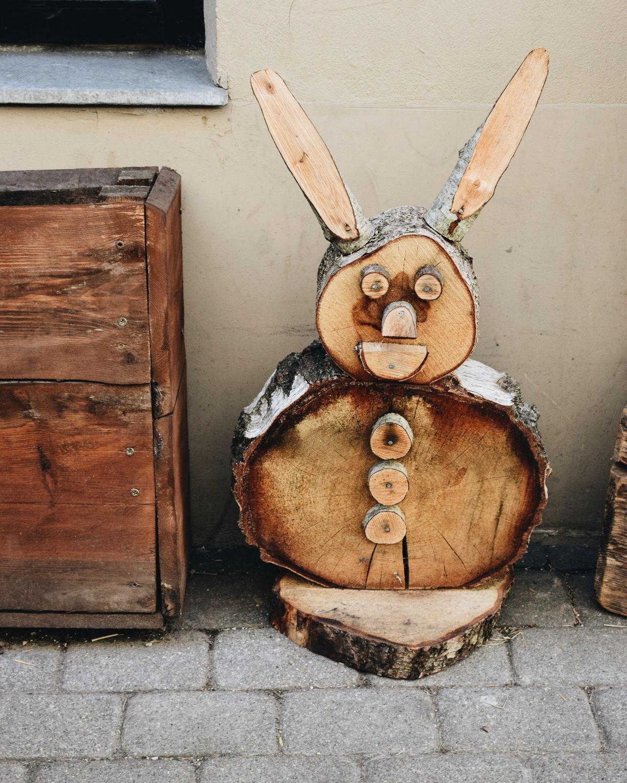 Riga Latvia Rabbit