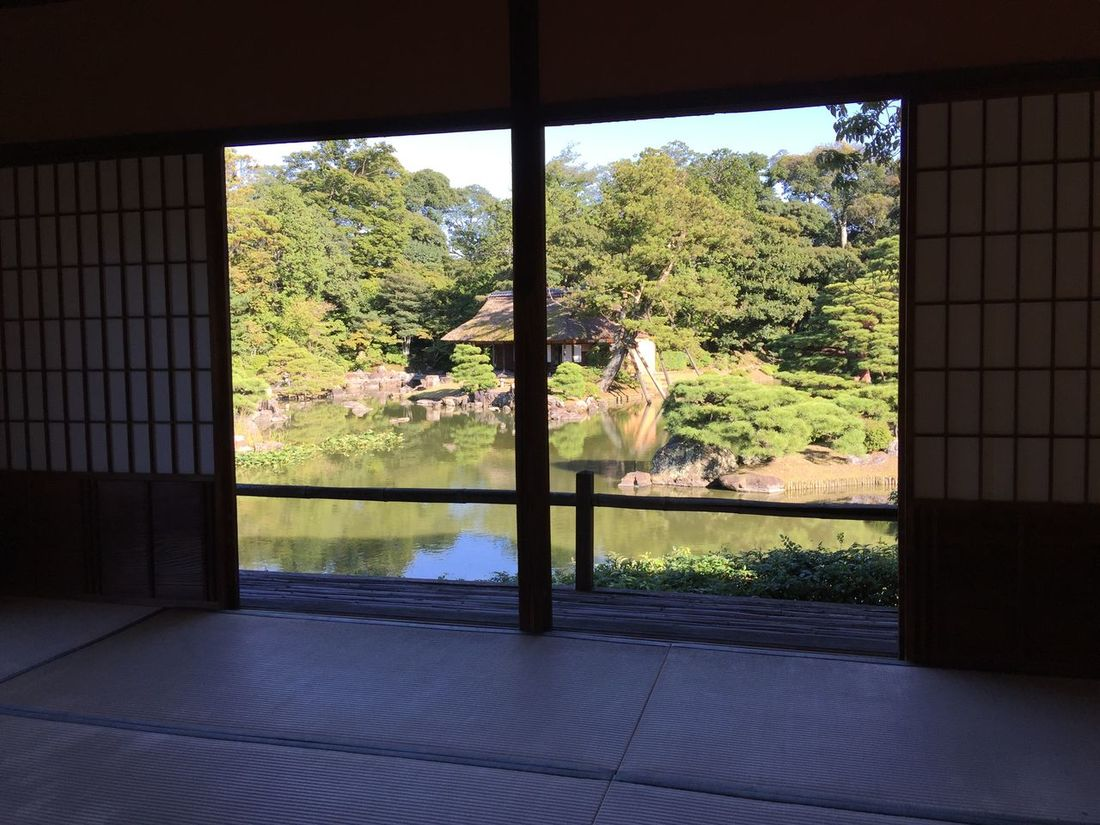 Fall Beauty 茶室 View From The Window... Kyoto Japanese Garden Japanese Architecture Autumn 桂離宮 Japanese Tea Garden Tatami Katsura imperial villa in Kyoto Japan Katsura Imperial Villa
