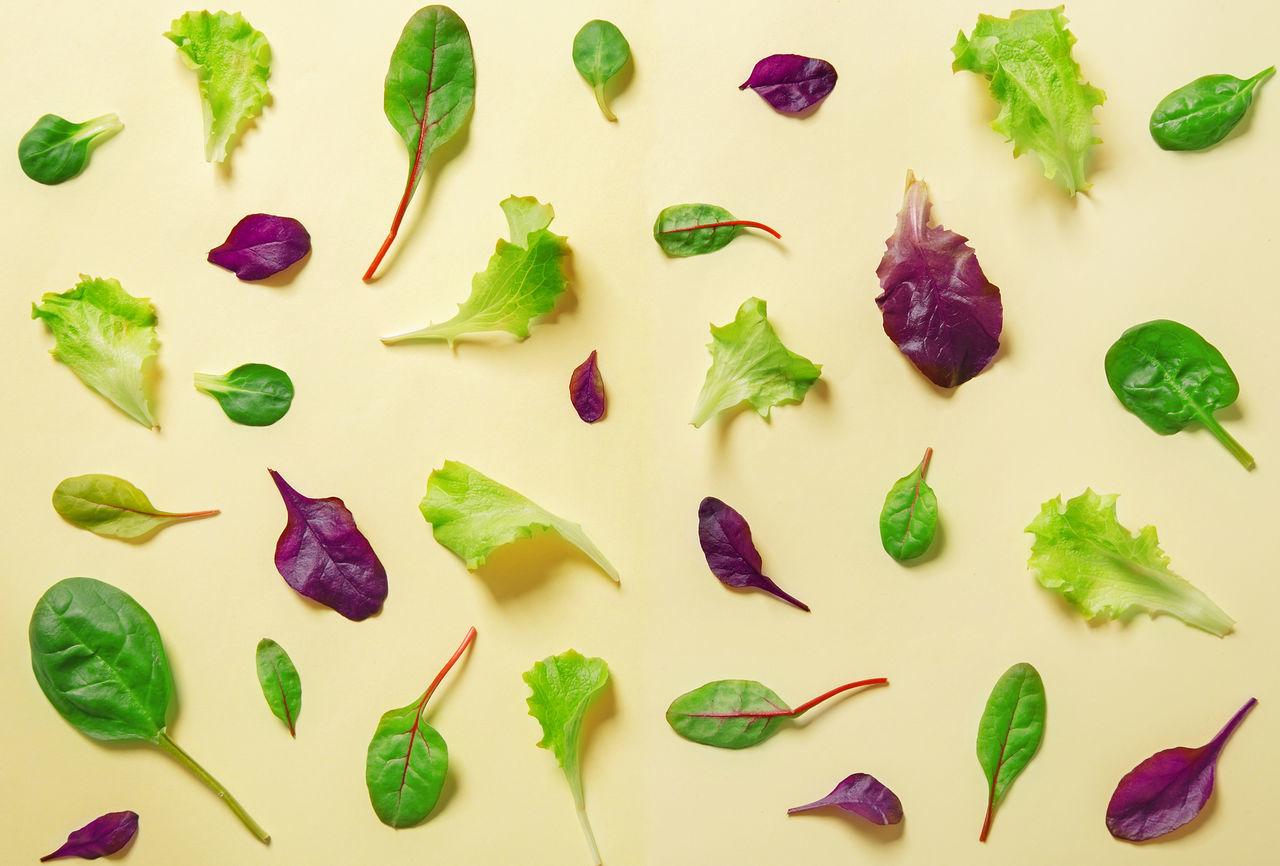 Flat lay salad pattern. Top view Flat Lay Food Freshness Green Food Green Leaf Greens Healthy Eating Leaves Lettuce Red Leaf Salad Studio Shot Variation