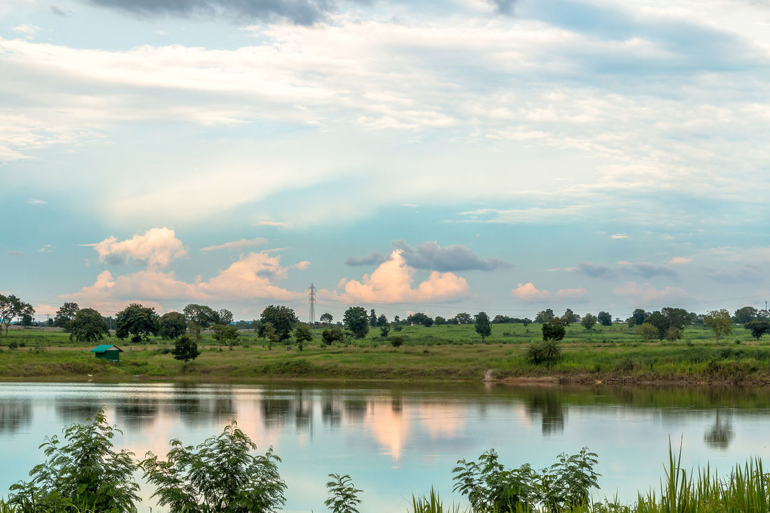 Landscape in cloudy day with fluffy cloud Background; Beauty In Nature Blue Sky; Cloud - Sky Cloudy; Day Evening; Fluffy Cloud; Grass; Green; Lake Landscape Meadow; Nature No People Outdoors Pond; Reflection Scenics Sky Tranquil Scene Tranquility Tree Water Waterfront