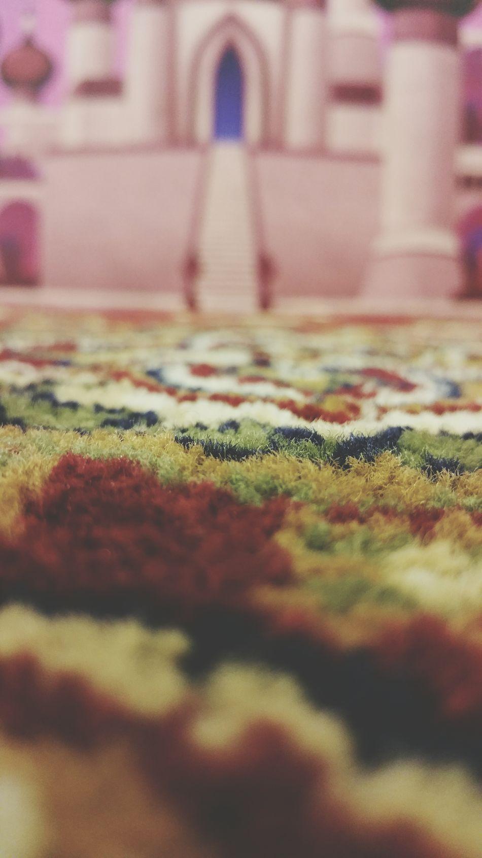 Carpet Majic Carpet