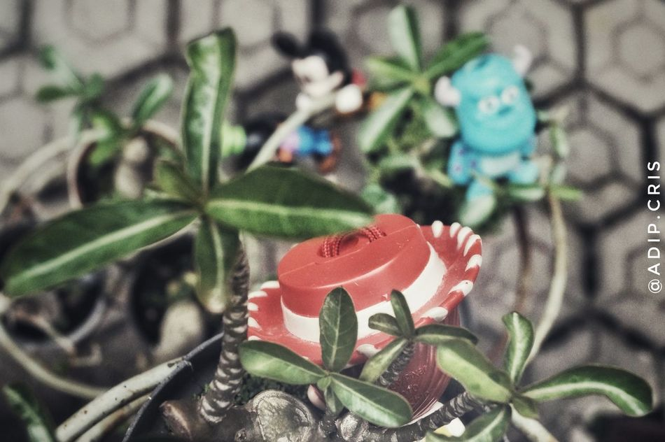 Gfx Day Outdoors No People Animal Themes Photooftheday Figurine  Mickeymouse Monsterinc Toystory Memory Sonya58 Photographer Photography Photos Filter Photo Effect FX Toysoutdoors Toys4life Toysphotogram Toysphotography Photograph Close-up