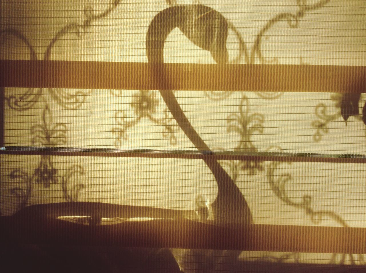 window, indoors, curtain, shadow, blinds, day, close-up, no people