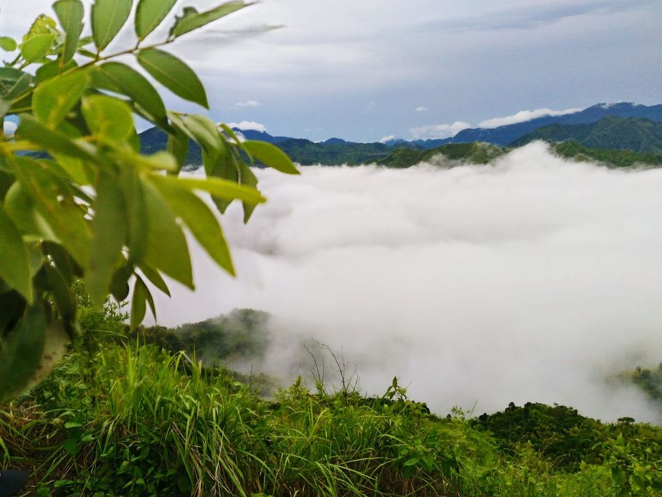 Phmountains Eyeem Philippines Nature Photography SeaOfClouds GodsCreations Pinoymountaineer Mountaintop