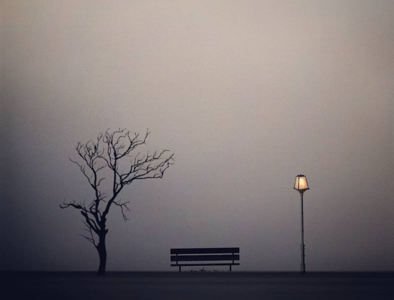Would you like to sit down ? Bare Tree No People Tree Nature Looking For Inspiration Branch Tranquil Scene CaptureTheMoment Light And Darkness  Creative Photography Nightshift Night Lights Nightphotography Look Like It's Magic From My Point Of View Exceptional Photographs EyeEm Nature Lover Light Up Your Life Beauty In Nature Landscape Silhouette CreativePhotographer Bench Its Me Capture The Moment