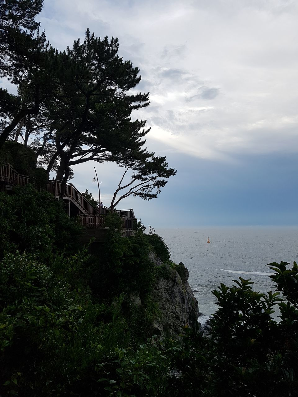 sky, nature, tree, sea, water, cloud - sky, scenics, beauty in nature, no people, tranquility, outdoors, growth, scenery, day