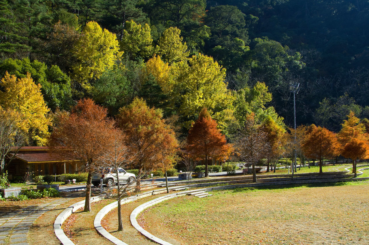 Adult Adults Only Atmosphere Autumn Autumn Beauty In Nature Building Day Fall Go Sightseeing Green Color Landscape Large Group Of People Leisure Activity Life Maple Men Mountain Nature Outdoors People Scenics Travel Tree Tree