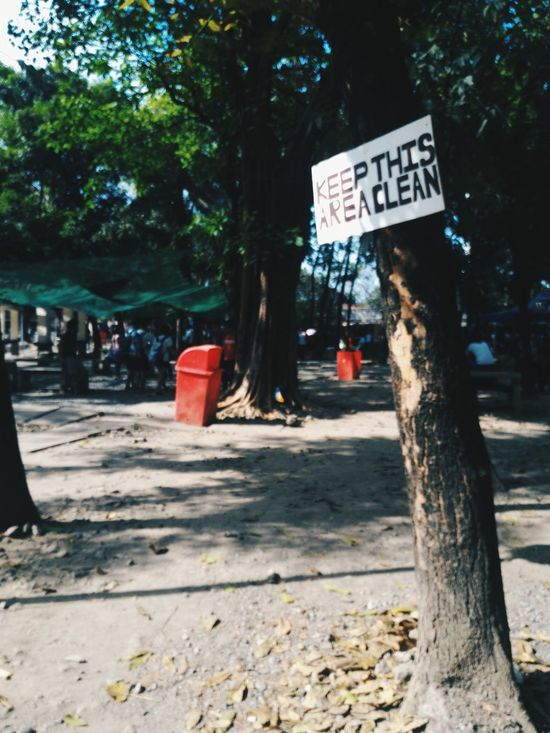 I know I shouldn't be here. Signage Signboard Isolated Alone Garbage Bin Asus Zenfone Photography VSCO Blurry On Purpose Blurry Lonely Noonearound Philippines Nature Outdoors Tree Unnoticed Art Unnoticed