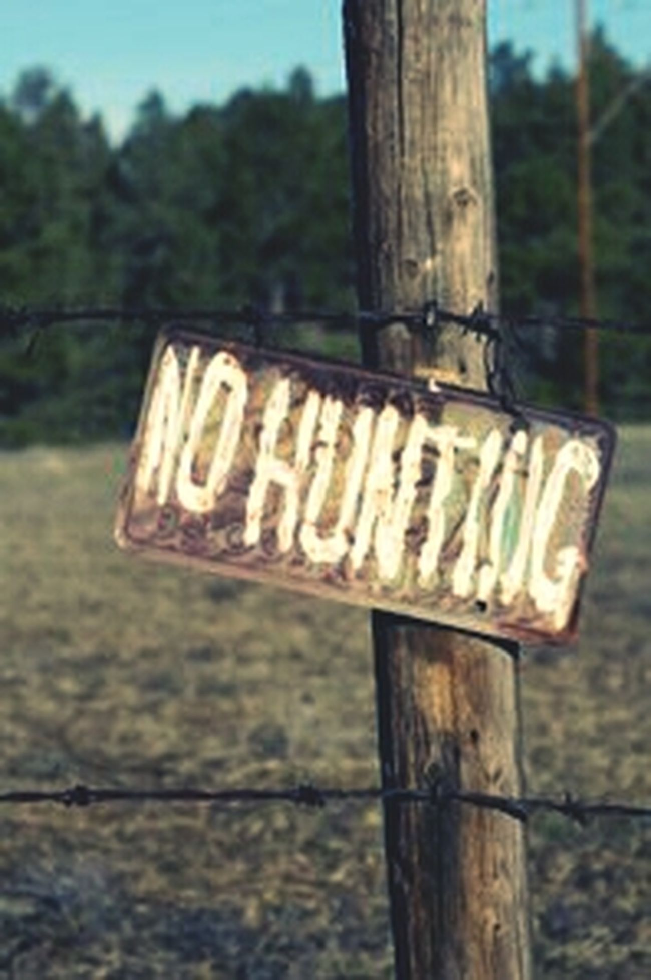 Hunting No Hunting Its The Law