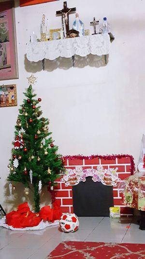 EyEmNewHere Christmas Christmas Tree Christmas Decoration Celebration Tree Tradition Christmas Lights EyeEmNewHere