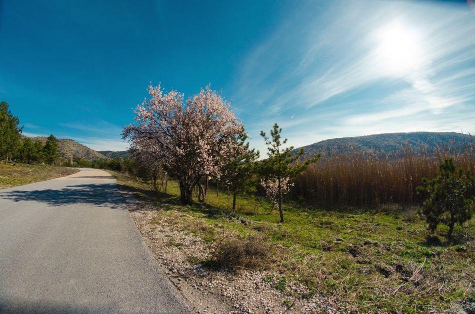 Beautiful stock photos of ankara, Ankara, Beauty In Nature, Blue, Bright
