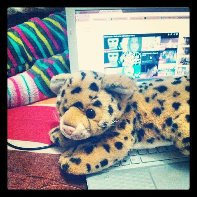 Yep ;p Piyama Party Wih Friends funny teenagers happy night l4f tiger