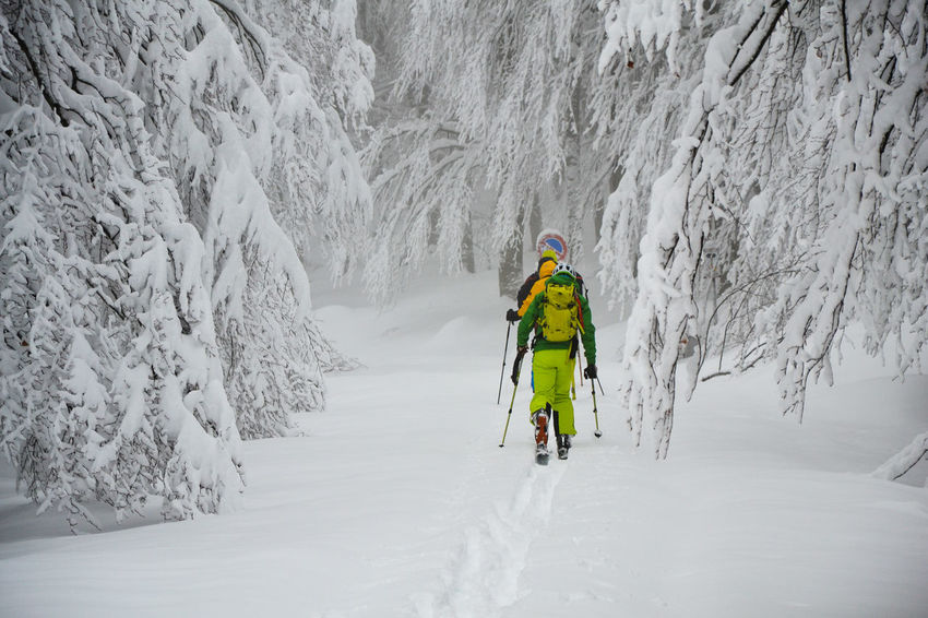 Cold Temperature Cross Country Skiing Nature Ski Snow Snow Sports Travel Winter