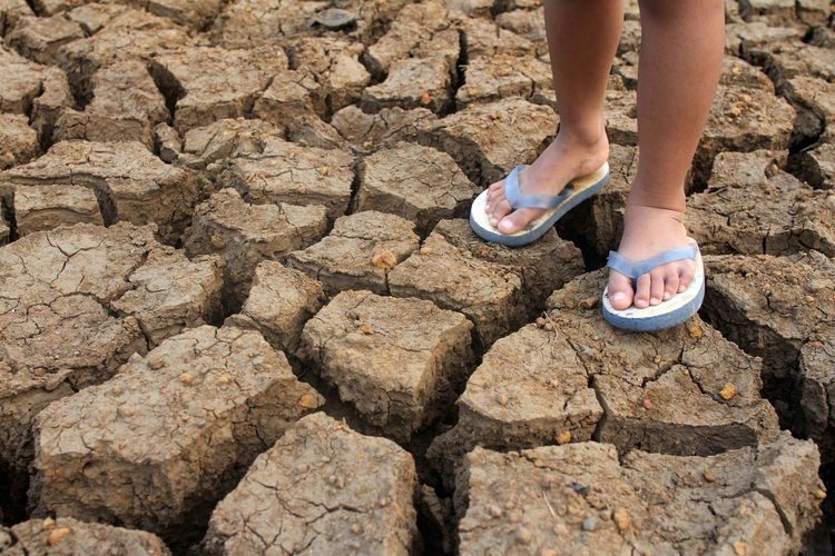 Dry cracked soil due to drought Cracked Soil Drought Dry Season Catastrophe Children Foot