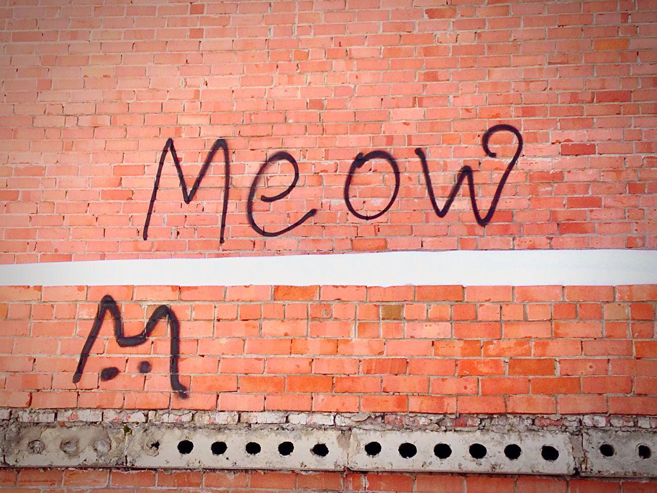 Meow Cat Kuku