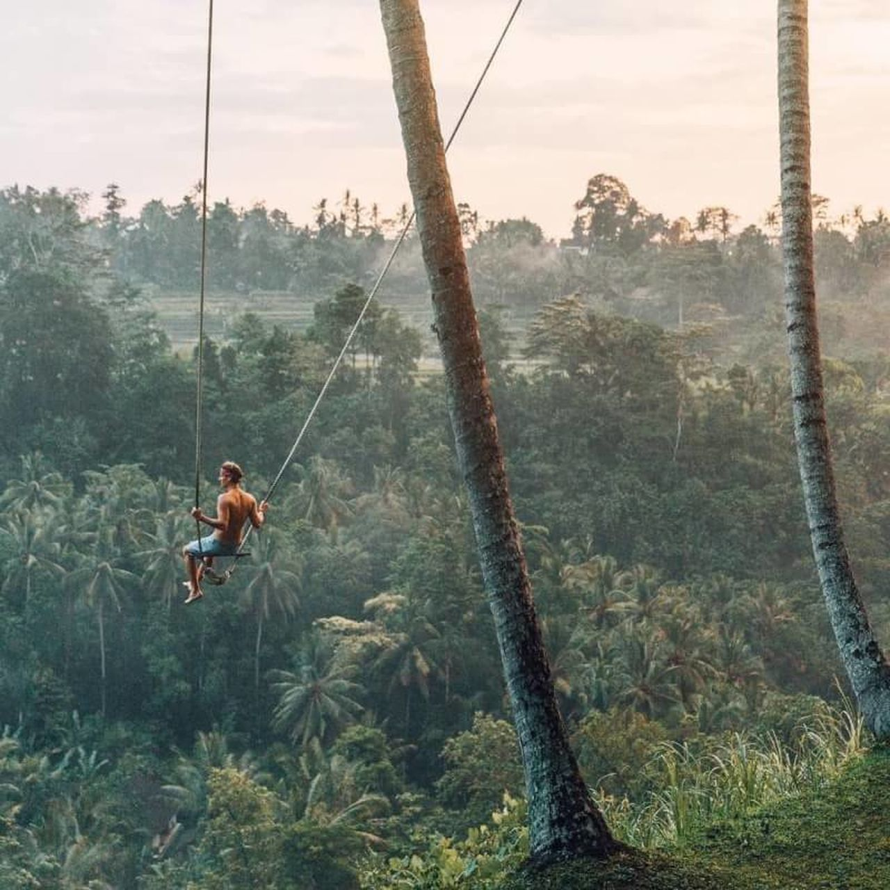 The masterpiece of bali 🍃 Tree Nature One Person Swing Outdoors Sky One Man Only Gripping