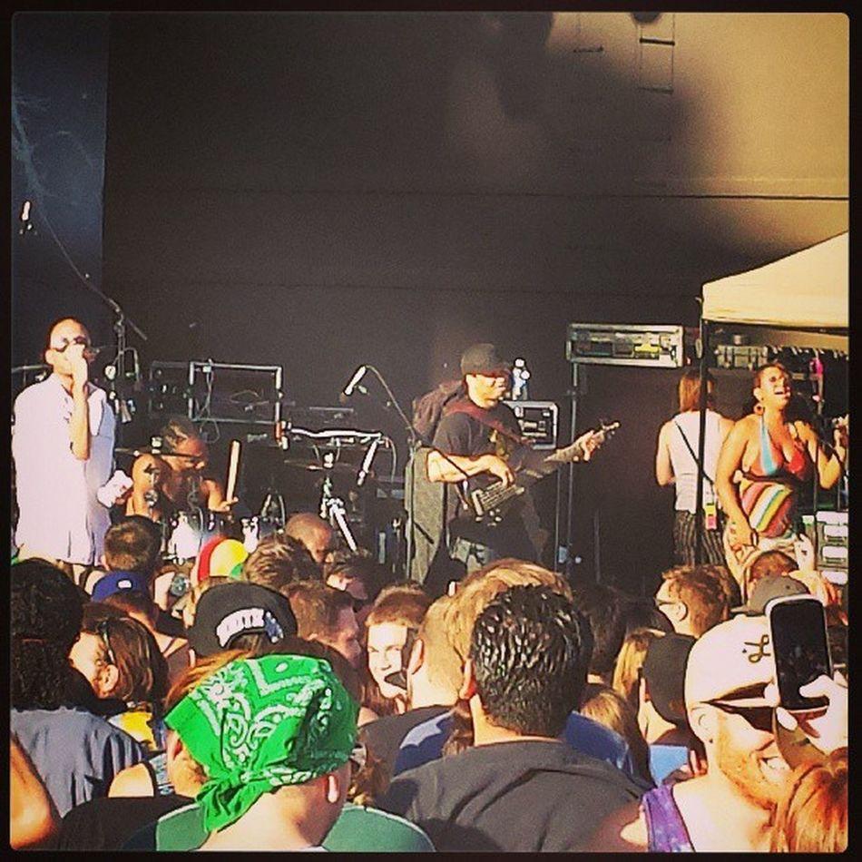 Collie Buddz working the AZ crowd. Colliebuddz Reggae Arizona Mesaarizona goodvibestour