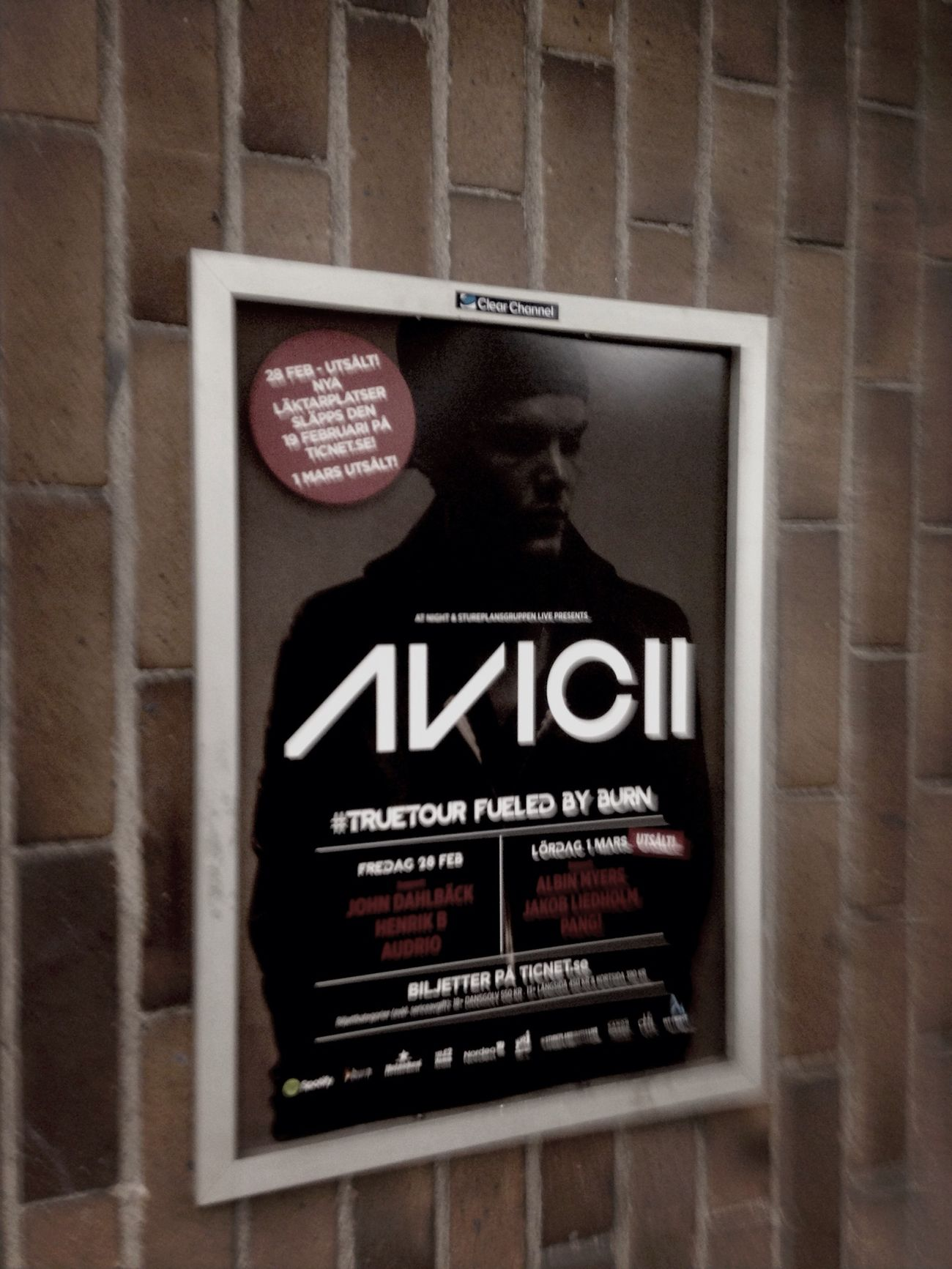 True Tour Avicii Concert