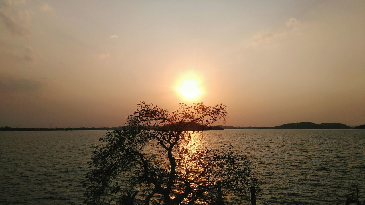 Sunset Water Nature Tree Horizon Over Water No People Sky Tranquility Wetland Outdoors Sunset Collection EyeEm Nature Lover EyeEm Travel Photography EyeEm EyeEm Gallery Eyeem Travel Landscape Nature Scenics River Nature On Your Doorstep From My Point Of View Tranquil Scene My Photo Commute