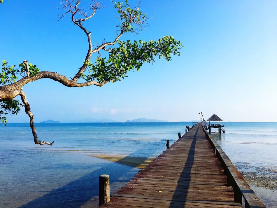 bridge of dream Horizon Over Water Sea Water Tree Tranquil Scene Wood - Material Pier Beauty In Nature Nature Tranquility Scenics Bridge Beach Clear Sky Blue Outdoors Jetty Day No People Sky Wood Paneling