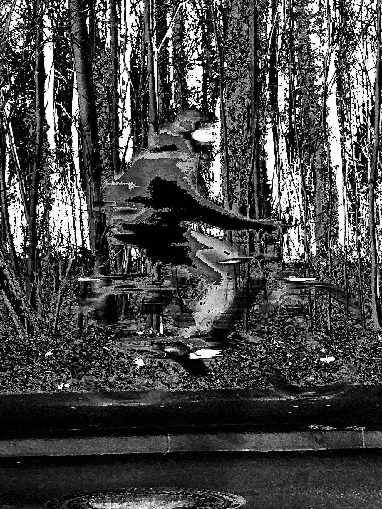 Ghost Rider Monochrome Photography EyeEm Best Shots - Black + White Blackandwhite Photography