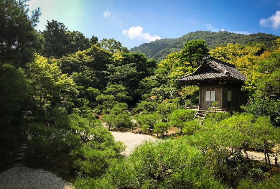 Garden Japan Japanese Style Kyoto Nature IPhoneography Traveling Travel Photography View Architecture Architectural Detail