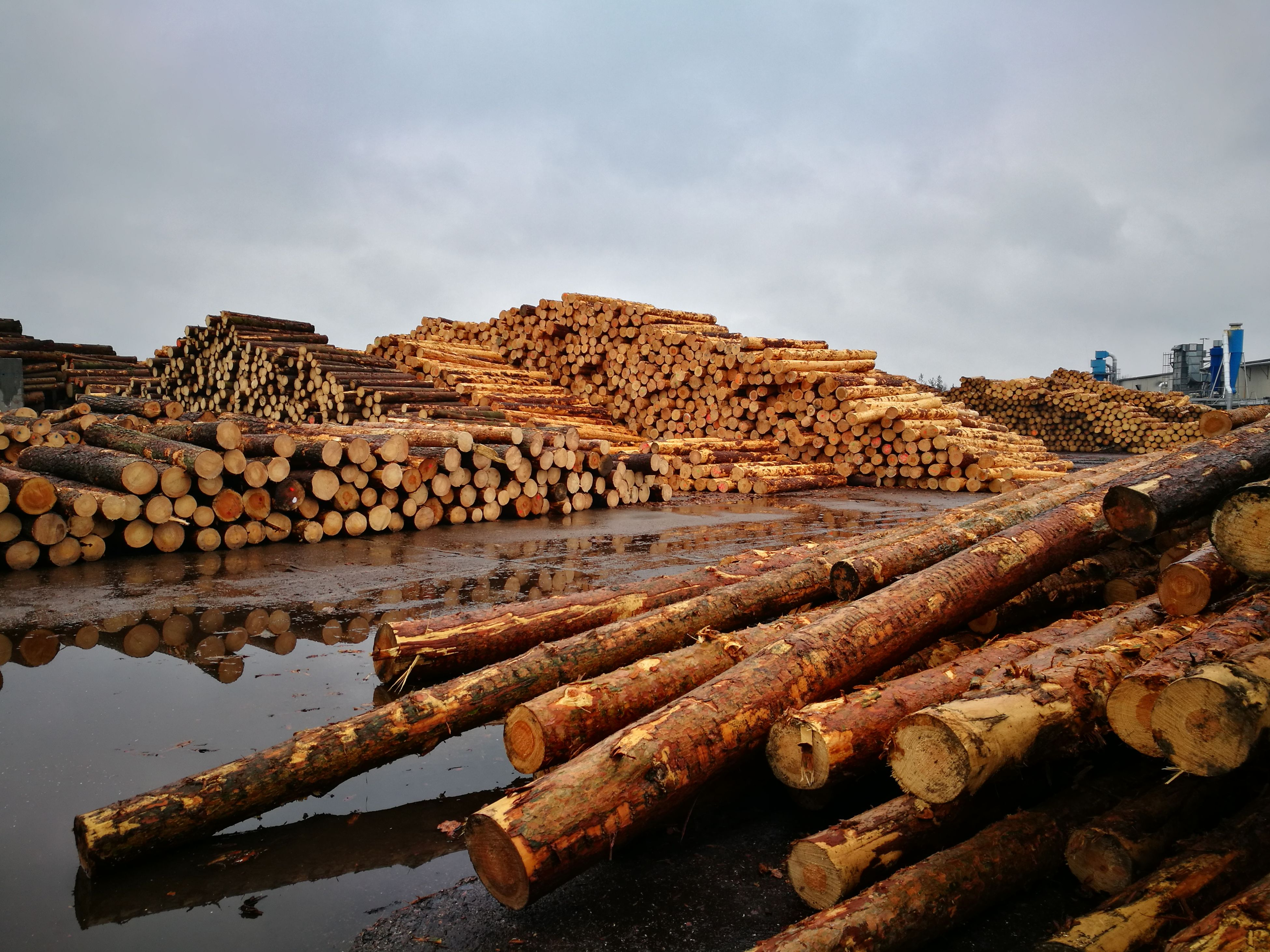 stack, lumber industry, deforestation, large group of objects, log, sky, timber, no people, nature, outdoors, day