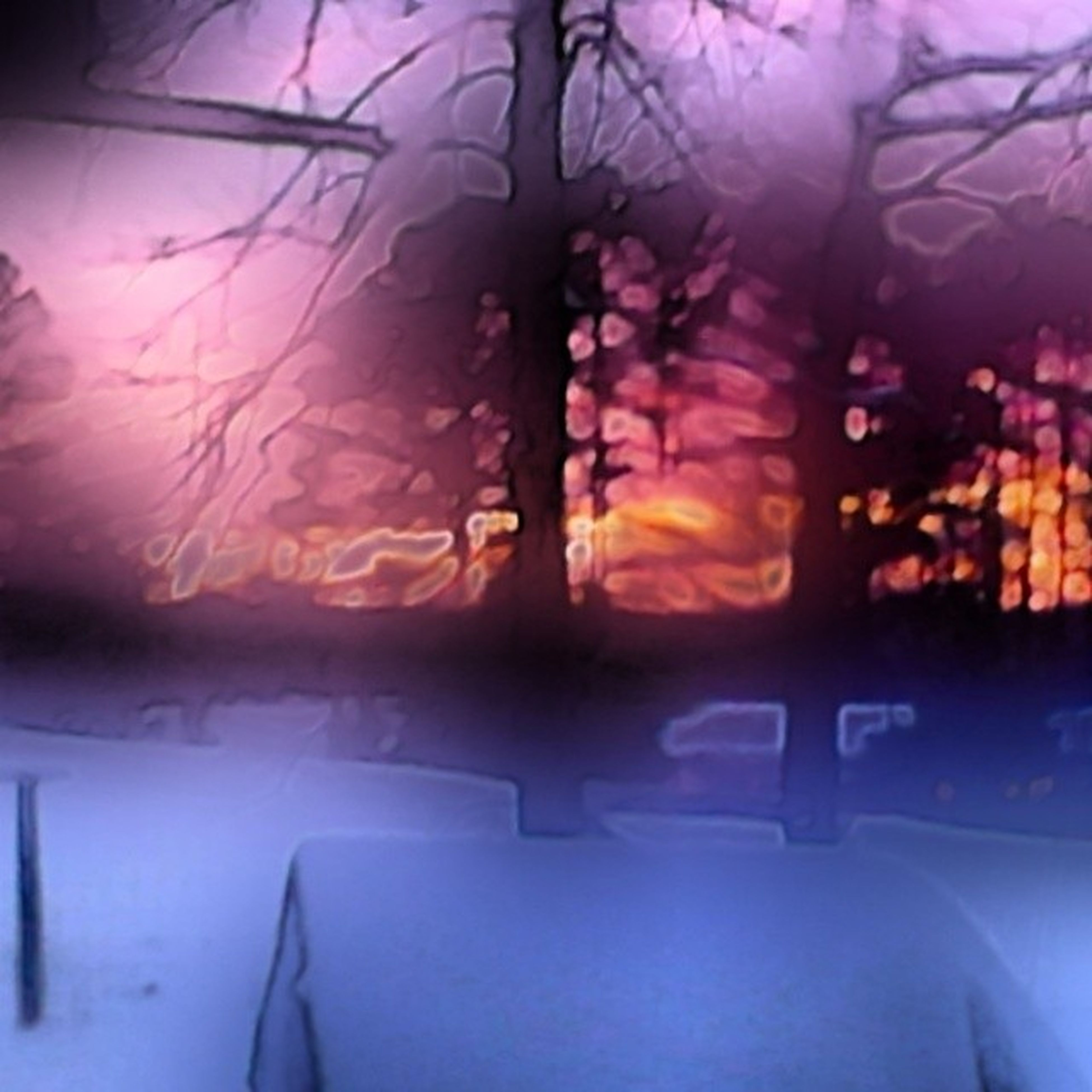 indoors, window, transportation, tree, glass - material, sunlight, car, transparent, land vehicle, sunbeam, vehicle interior, sunset, mode of transport, sun, no people, nature, sky, lens flare, silhouette, windshield