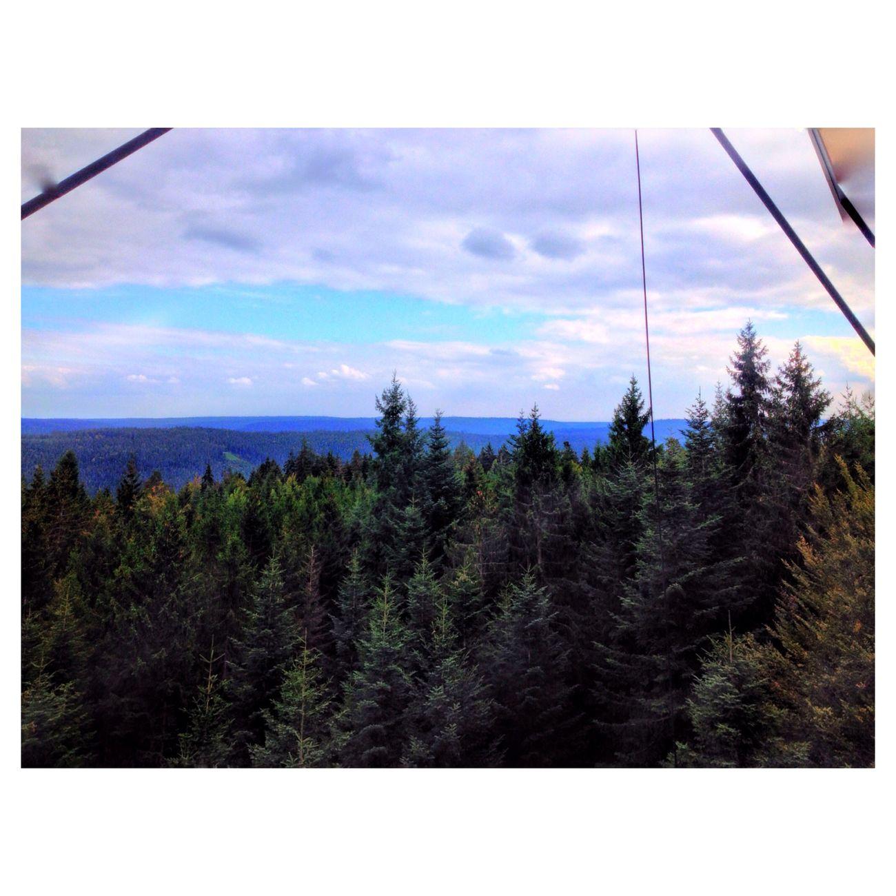Vscocam Enjoying Life Schwarzwald Blackforest vscogermany